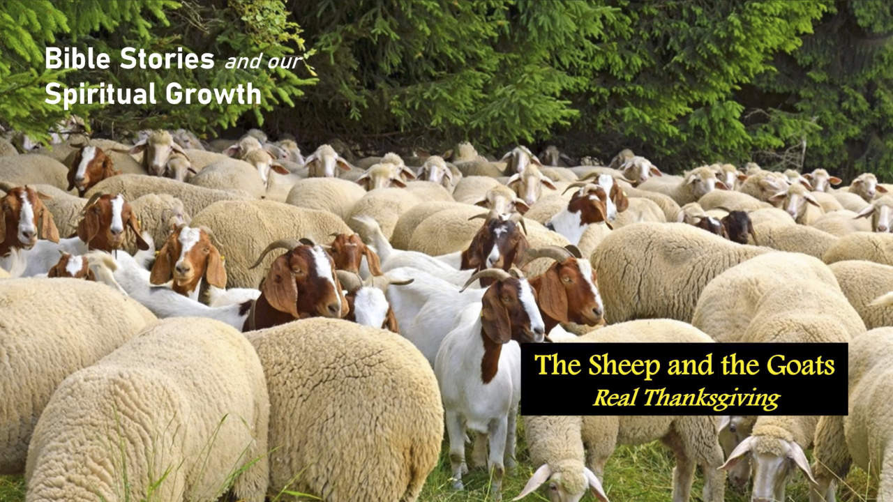 The Sheep and the Goats – Real Thanksgiving | Bible Stories and Our Spiritual Growth